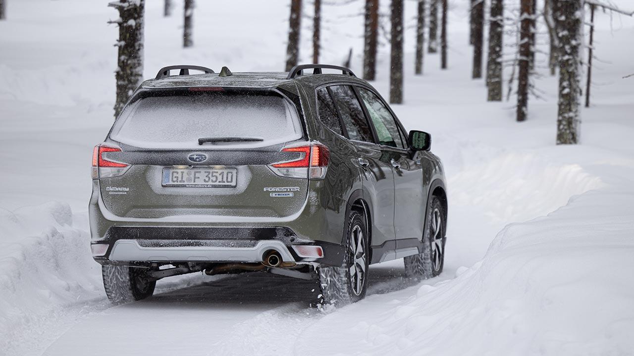 Subaru Forester e-BOXER - Heckansicht
