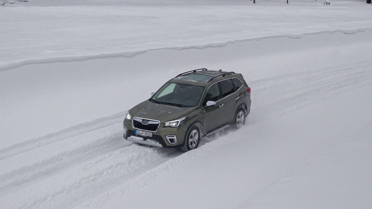 Subaru Forester e-BOXER - Vogelperspektive