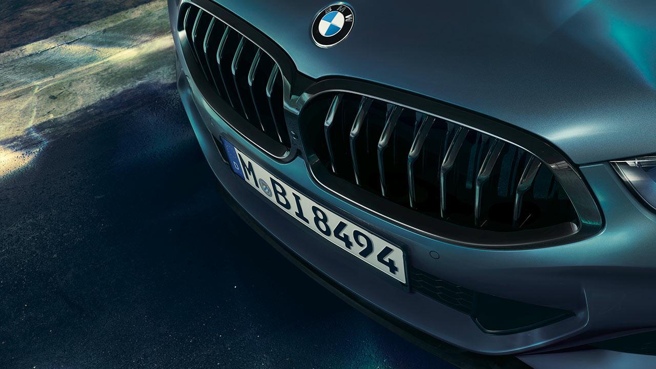 BMW M850i xDrive Coupé First Edition - Kühler